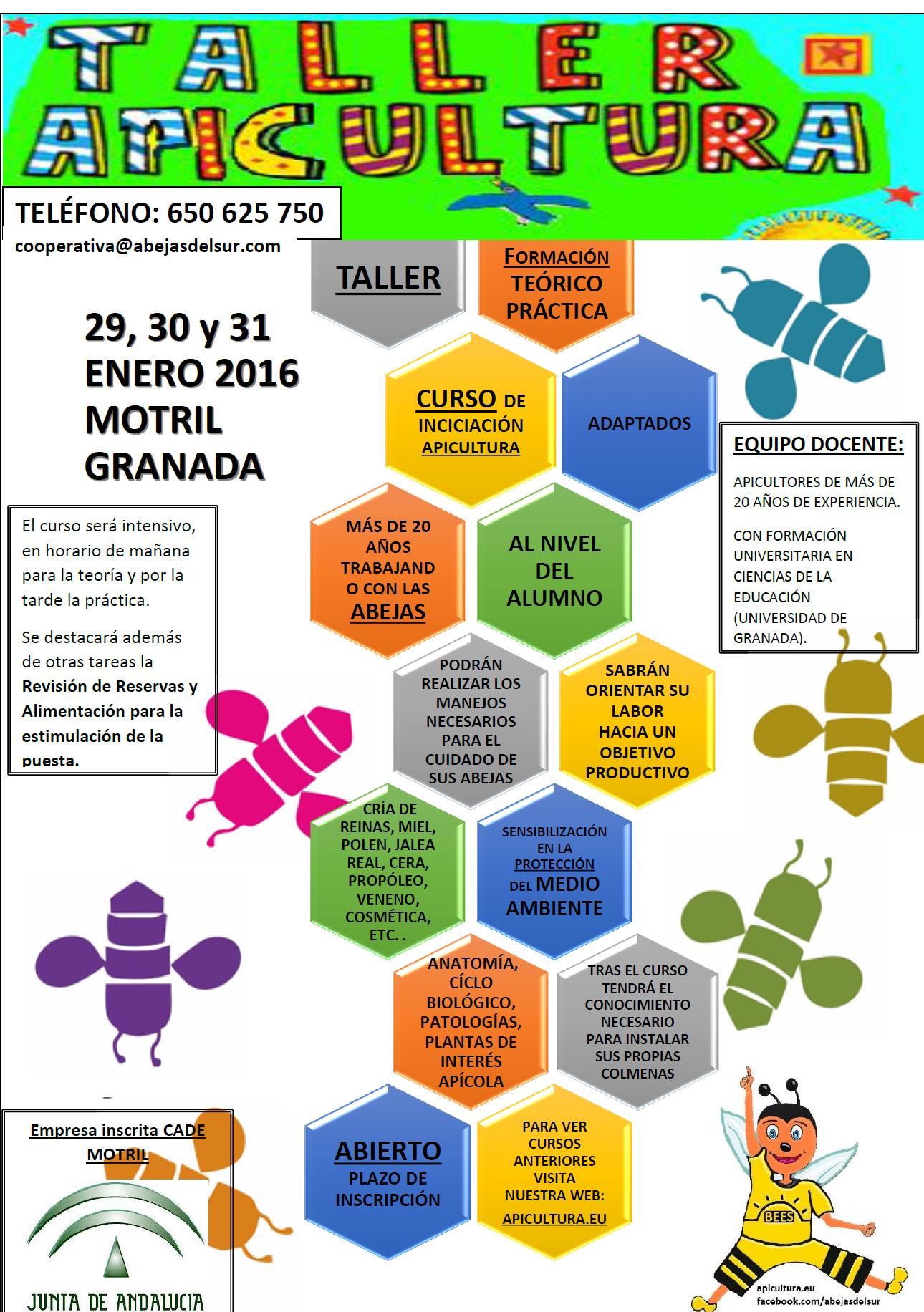 CURSO ENERO 2016.png